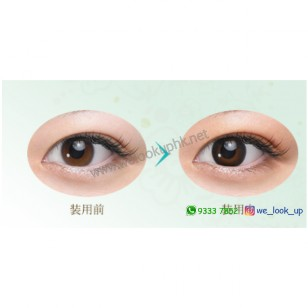 SEED Eye Coffret Natural Make 1-Day (日棄彩妝隱形眼鏡)